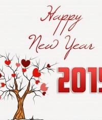 Thông báo lịch nghỉ Tết Dương Lịch 2015