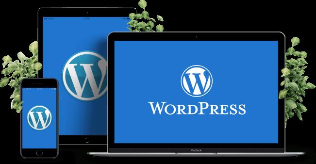 Điều cần tìm trong gói lưu trữ của WordPress   Thiết kế web chuẩn